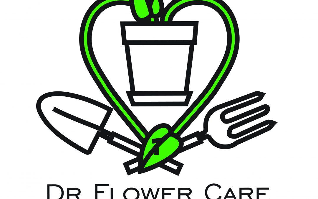 Dr Flower